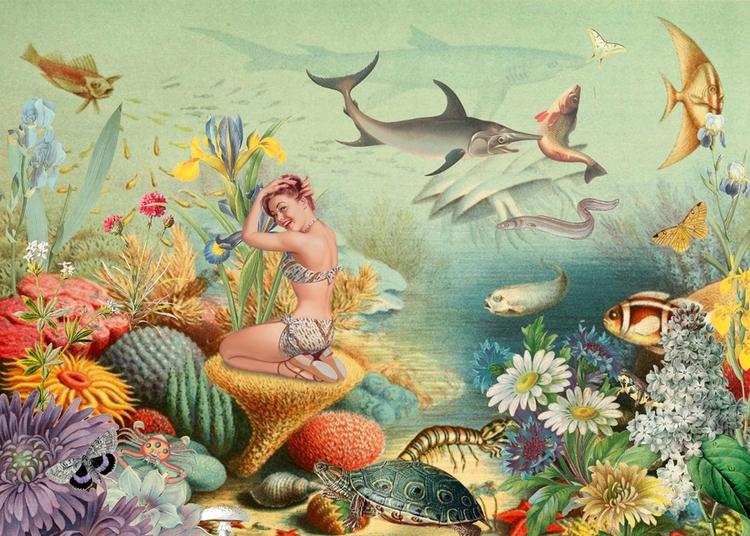 Coralline (2017) Born underwate - gloriasanchez | ello