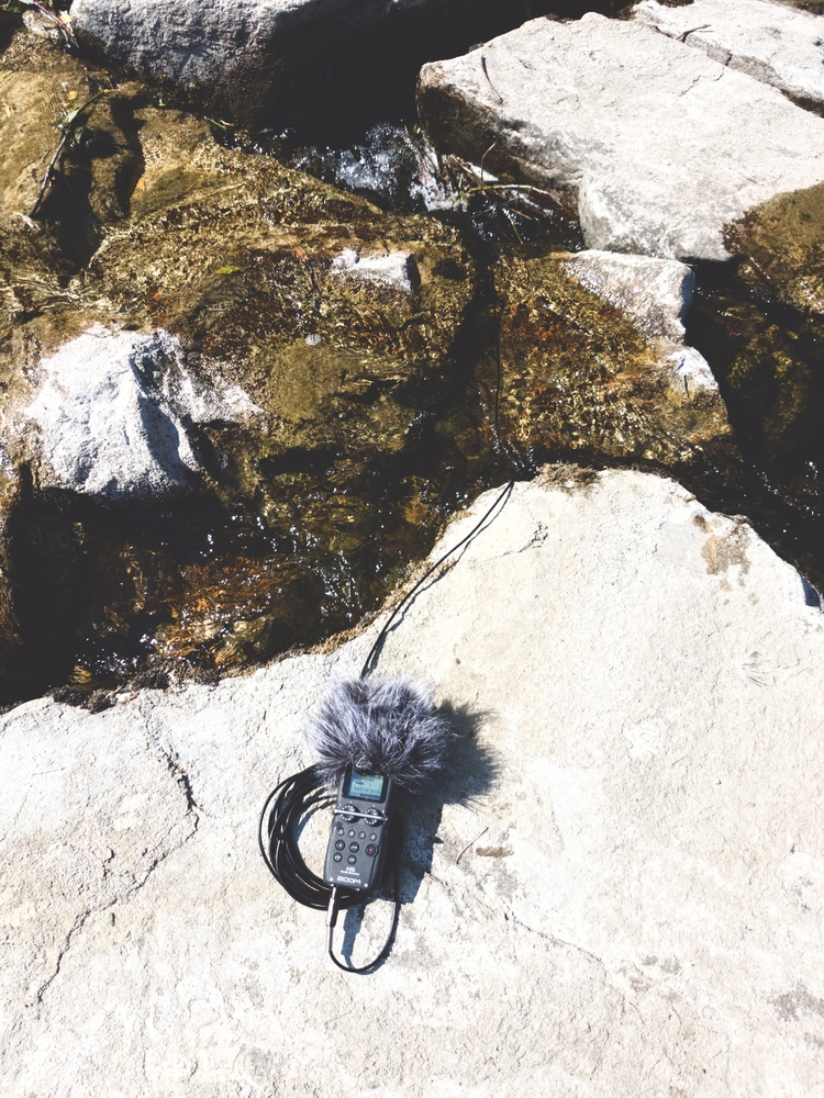 Hydrophone recording - water, underwater - cabled_mess   ello