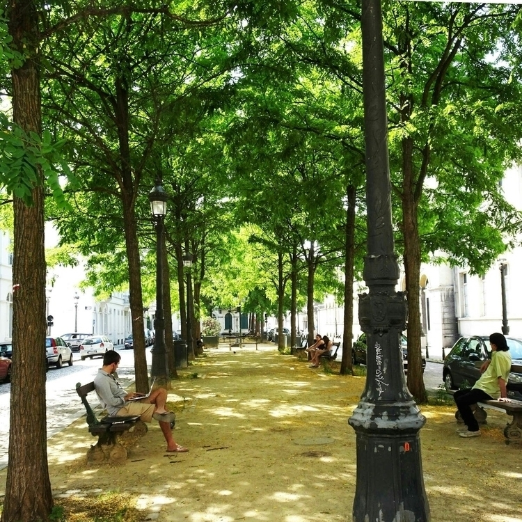 trees Rue du Grand Hospice, yes - thesupercargo | ello