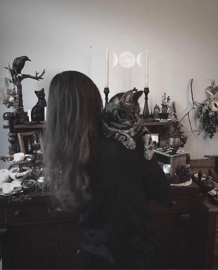 Lady Skyla Art Terri Foss ➳➵➳➵➳ - terrifoss | ello