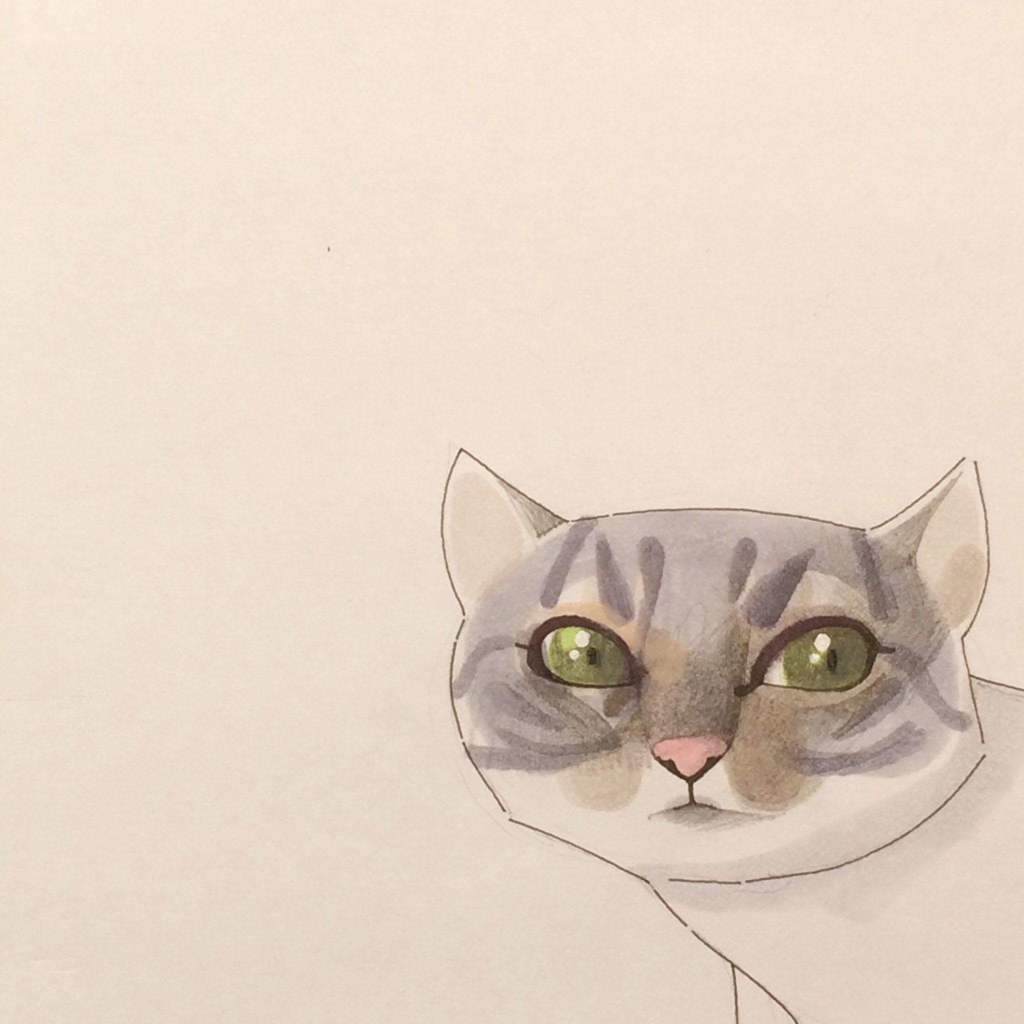 felino | cat - victorgarciabernal | ello