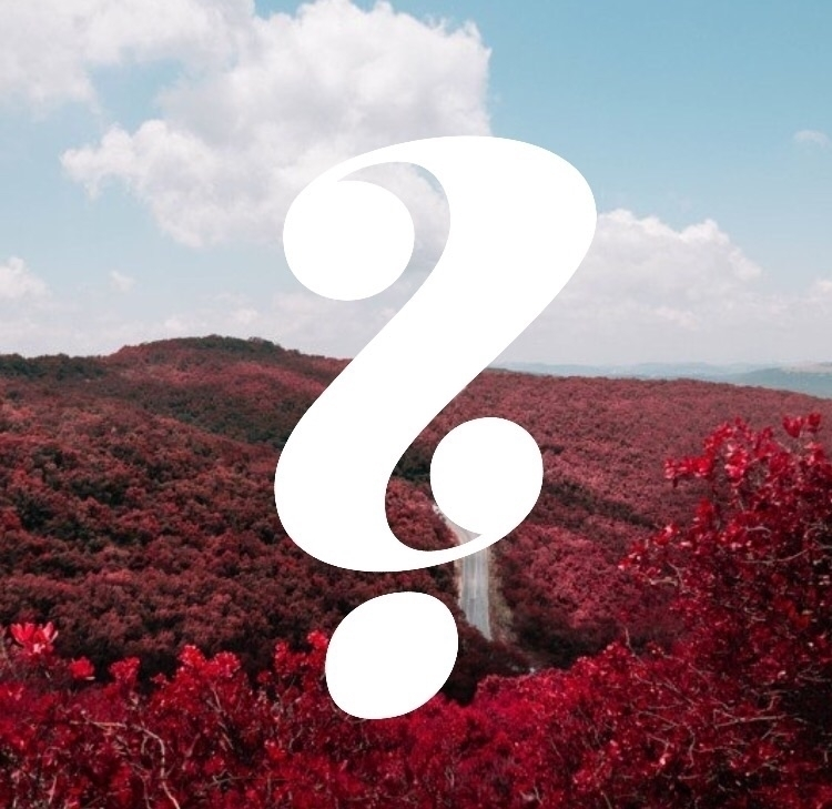 essential oil questions  - essentially_living_with_bj | ello