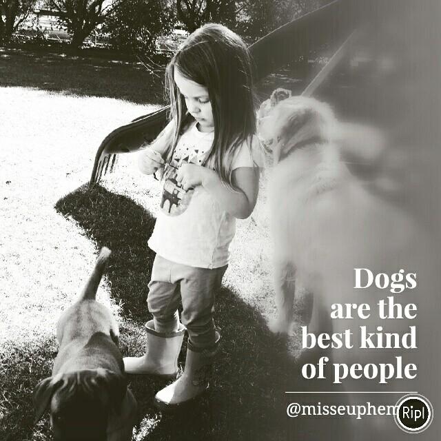 love puppies - creative - misseuphemia   ello