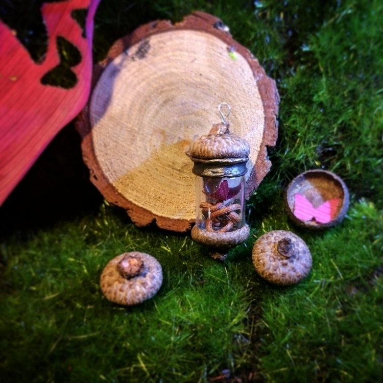 acorn capped mini terrarium - butterfly - clovermoon | ello