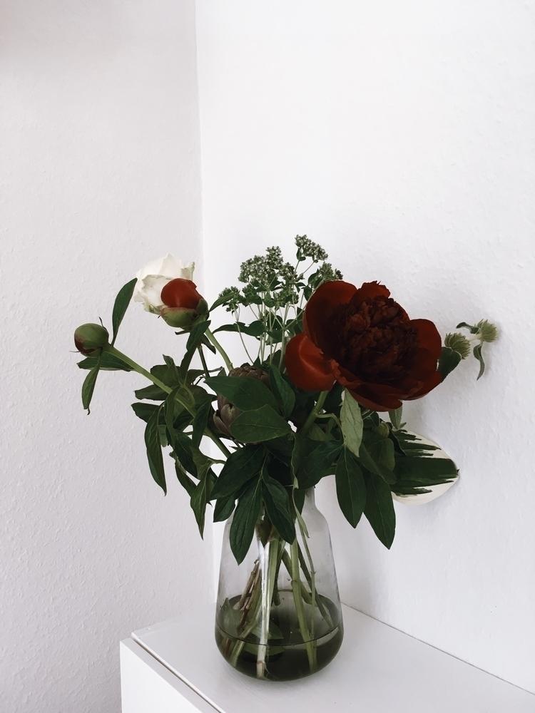 Contrasts flowers - emmakatrine | ello