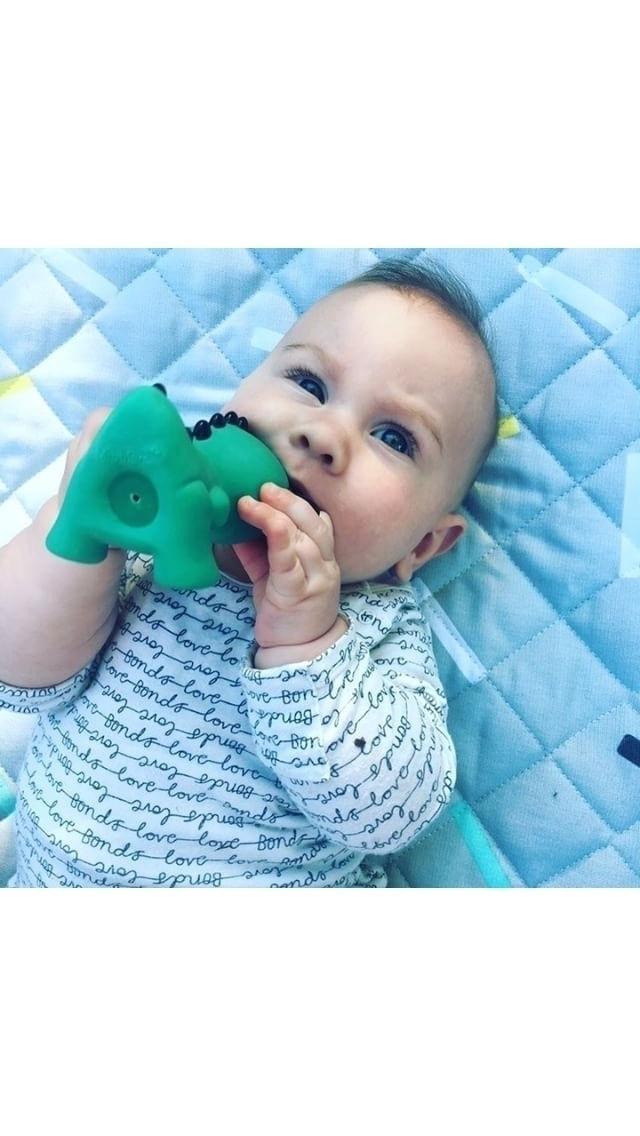 cute Mibbler?? coolest teething - themibblers | ello