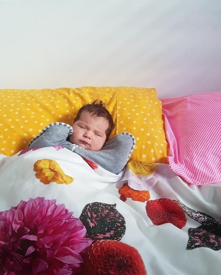 bed buddy - eva_and_tissy | ello
