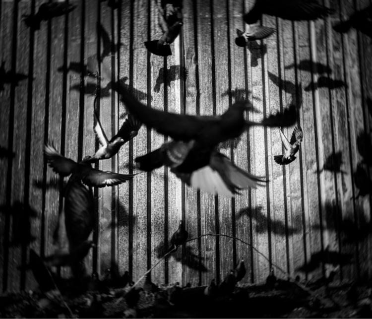 • Untitled | Negative Fordsburg - marcolongari | ello