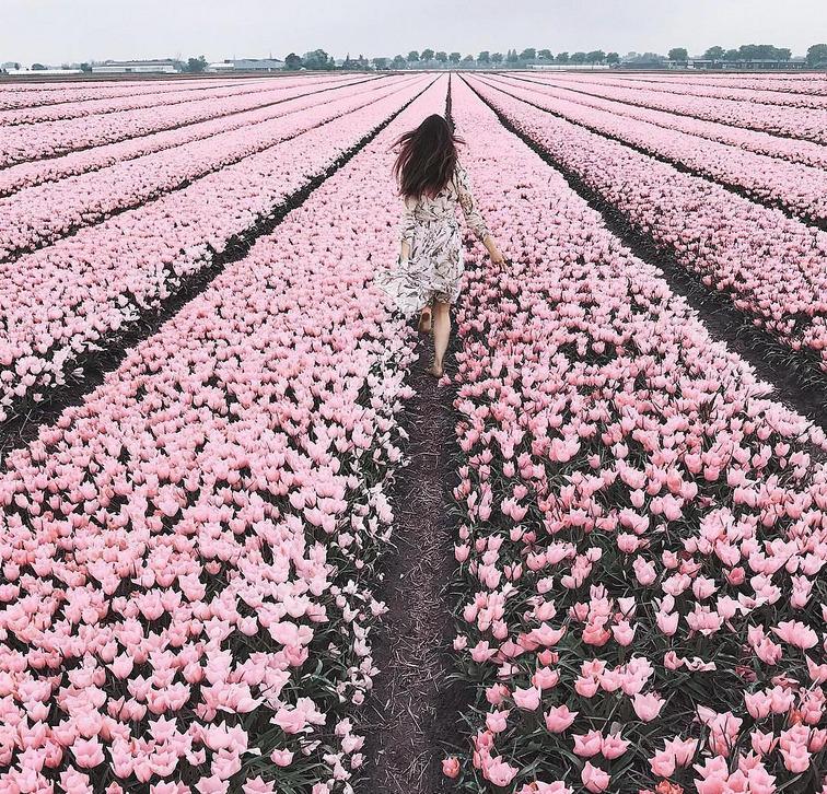 Love Mum xx - flowers, sunny, happy - bekole | ello