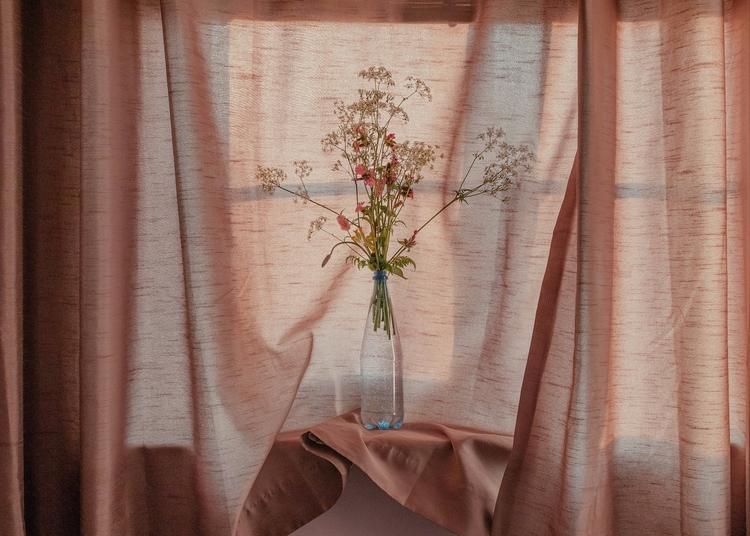 Wildflowers | blog - photography - alinatrifan | ello