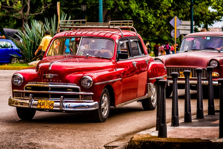 red rooster - Habana, Cuba - christofkessemeier | ello