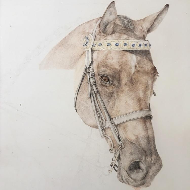 bit progress beauty - horse, drawing - carmenhui | ello