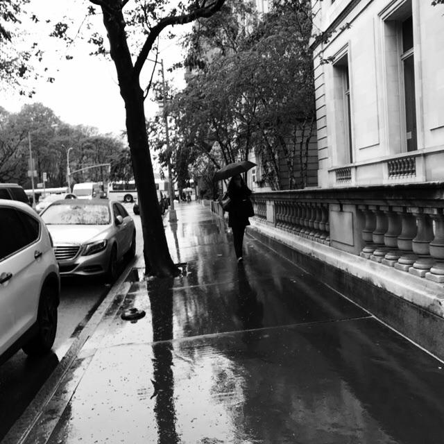 Raining - laolaya | ello