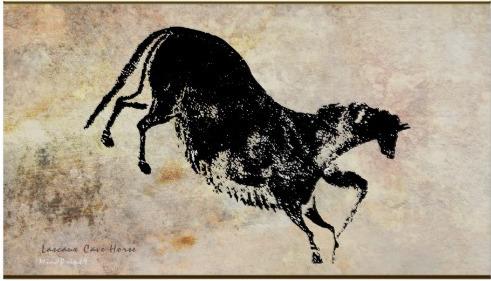 Lascaux Black Horse - asoknath | ello