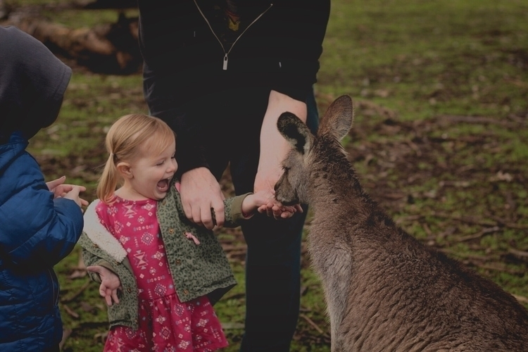 Find joy - Australia, kangaroo, ellchildhood - 2masters_and_a_miss | ello