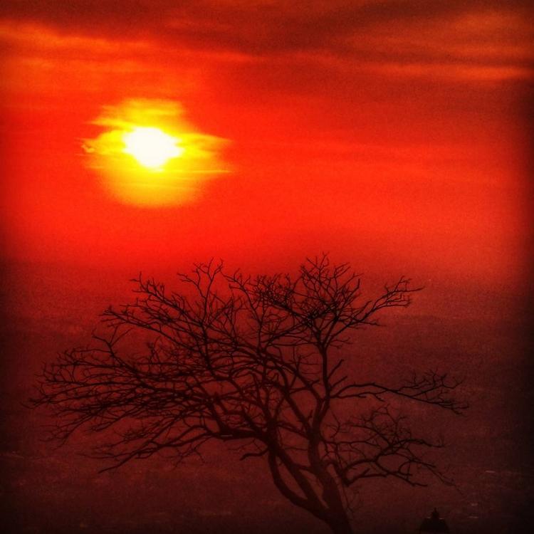 POMARAŃCZOWY | ORANGE ARANCIONE - viaggipl | ello