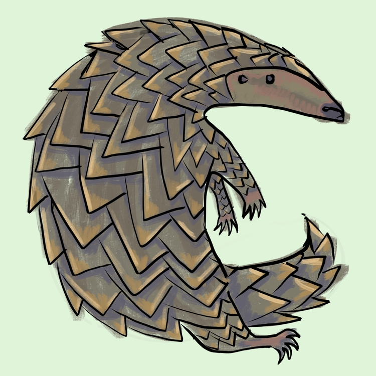 pangolin, endangedspecies, illustration - reneeleigh | ello