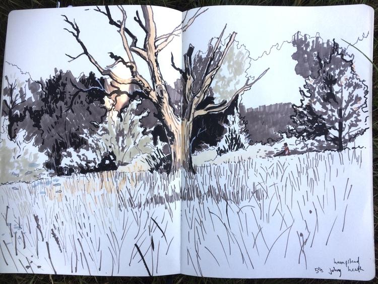 sketchbook. Dead tree/ Hampstea - alexgreendraws | ello
