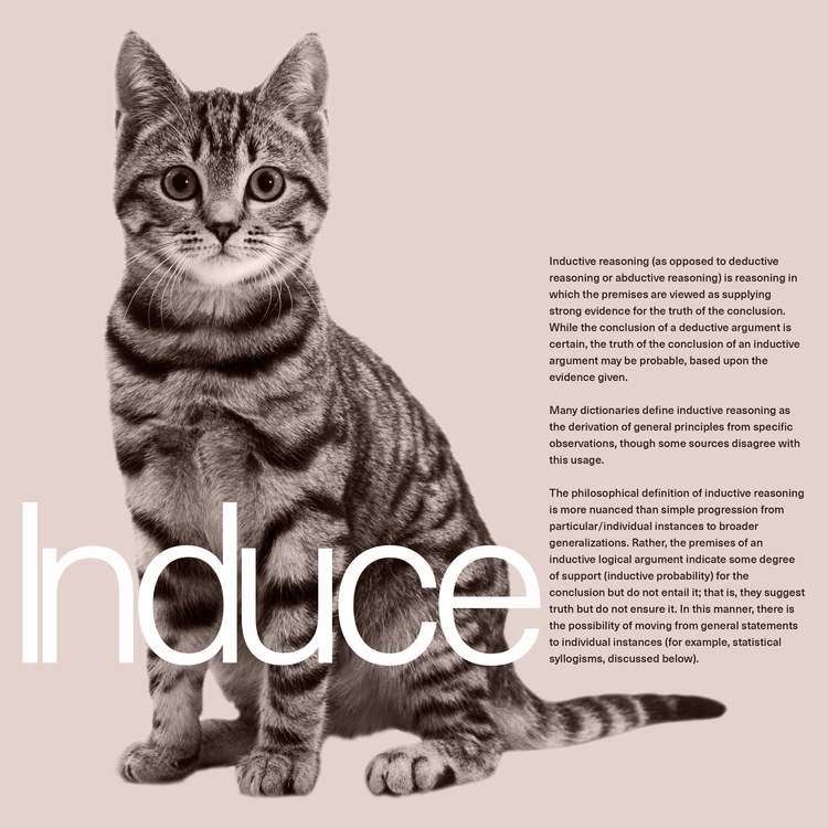 Induce - graphicdesign - paulsyng | ello