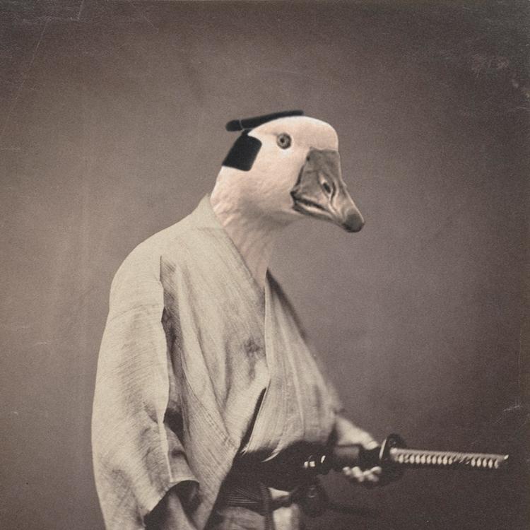Samurai - collage, goose, samurai - valenvq | ello