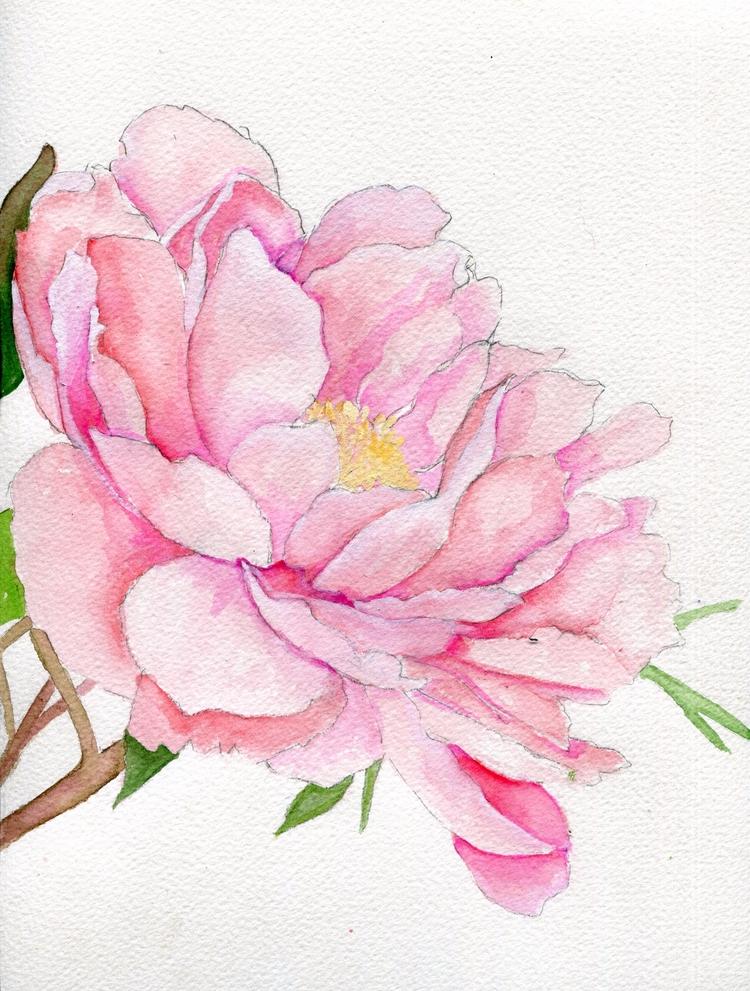 Watercolor Gouache Cotton Paper - havekat | ello