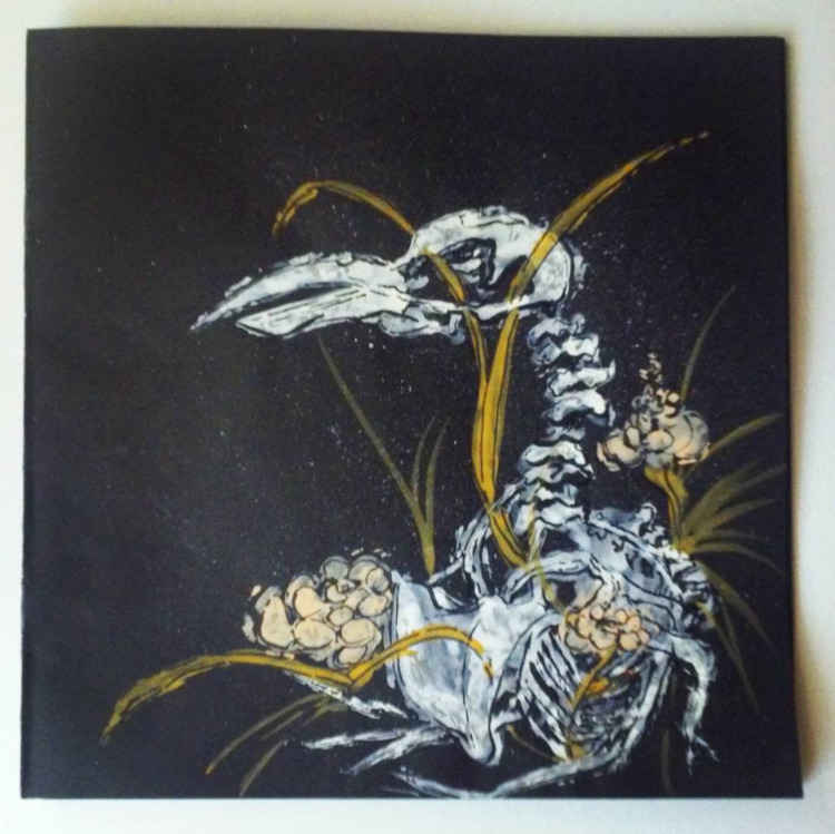 extinct bird skeleton insta. go - katrina_stautihar | ello
