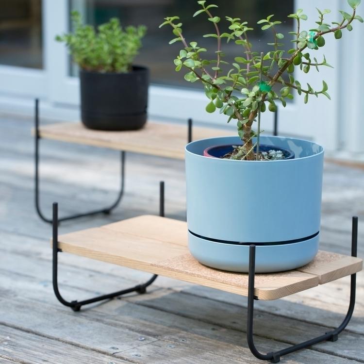 Staple Plant Stand Design- Luci - lucioushandmade | ello
