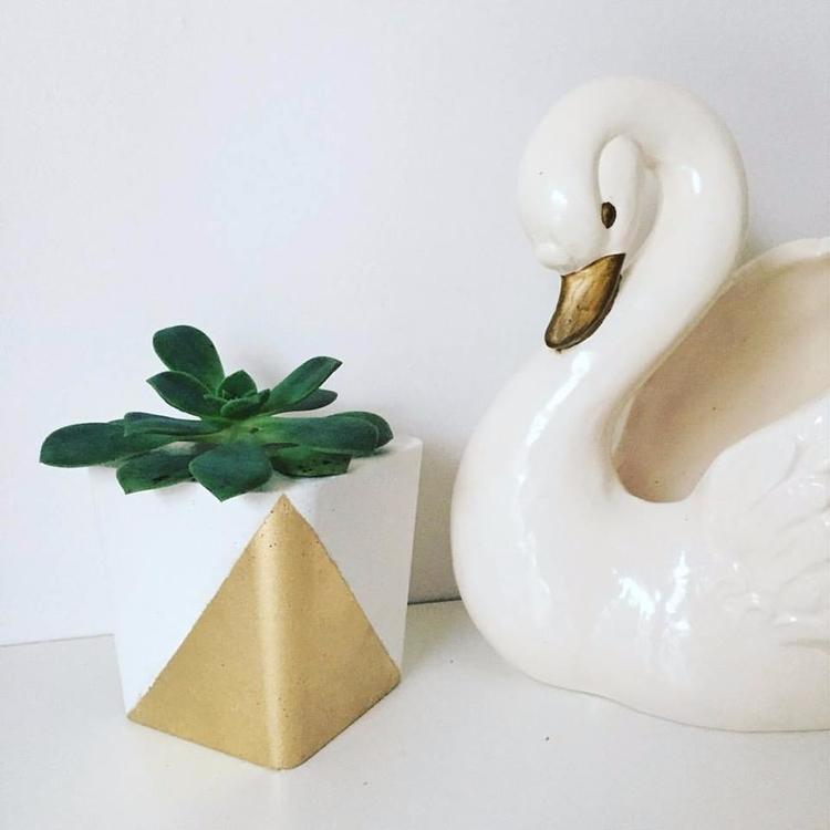 Golden Vibes  - concretepot, succulents - sweetyellowdecor   ello