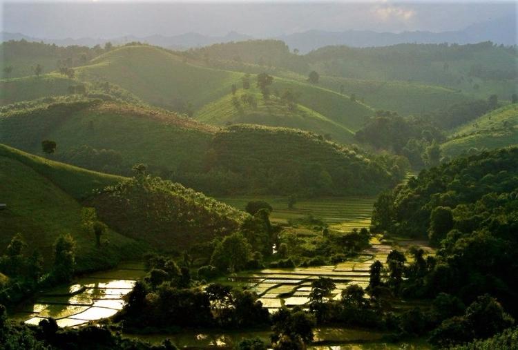 Nature - Nan#thailand - tangmay10 | ello