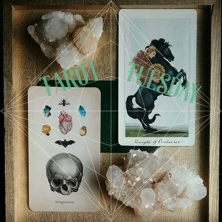 ♢ Tarot Tuesday Knight Pentacle - sacredservicereiki | ello