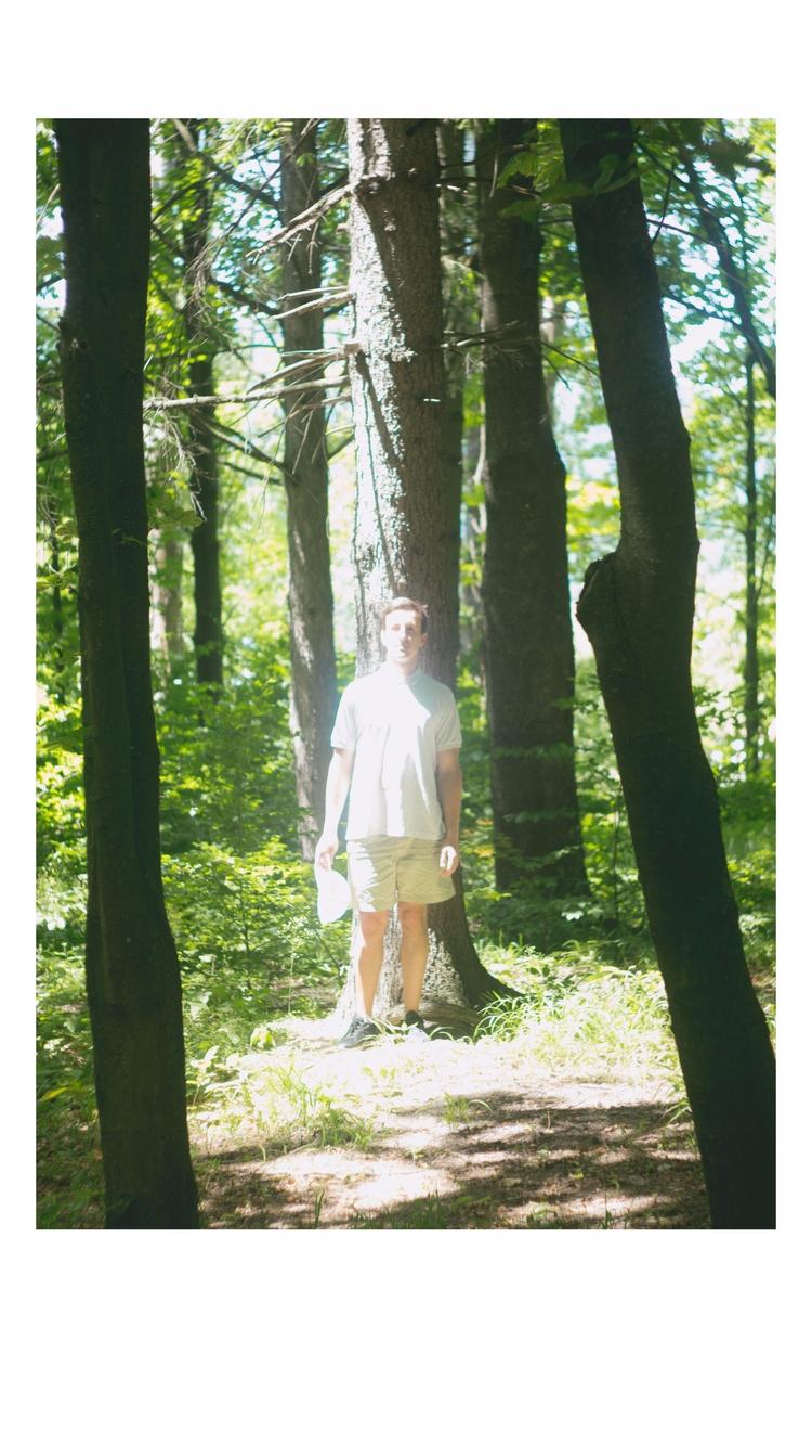 PHOTOGRAPHY tree - light, forest - svitlanayershova | ello