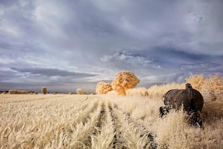 IR maize tanker - infrared, landscape - toni_ertl | ello