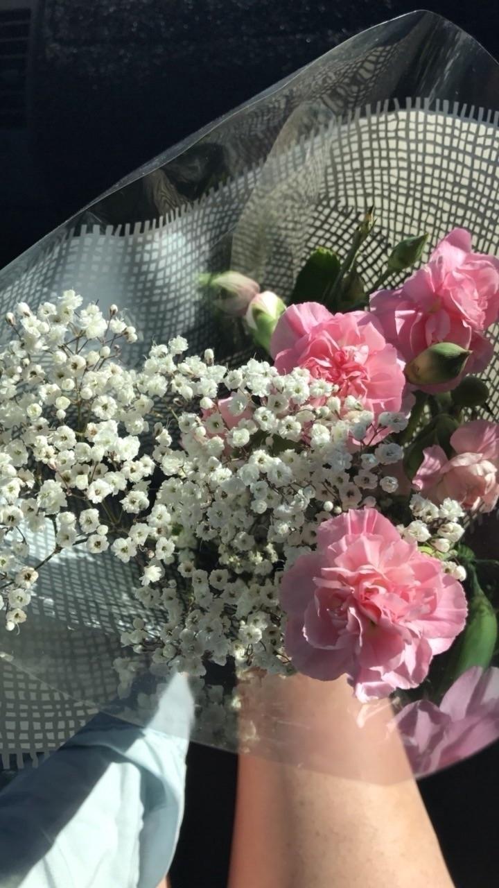 Fresh blooms - hotdogorleg - jadehanson | ello