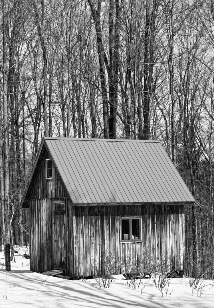 cabin friend Bruce built  - blackandwhite - docdenny | ello