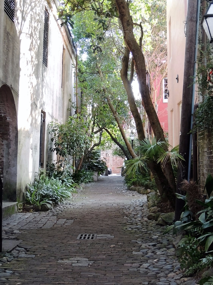 Charleston, South Carolina - amateur - bekah_h | ello