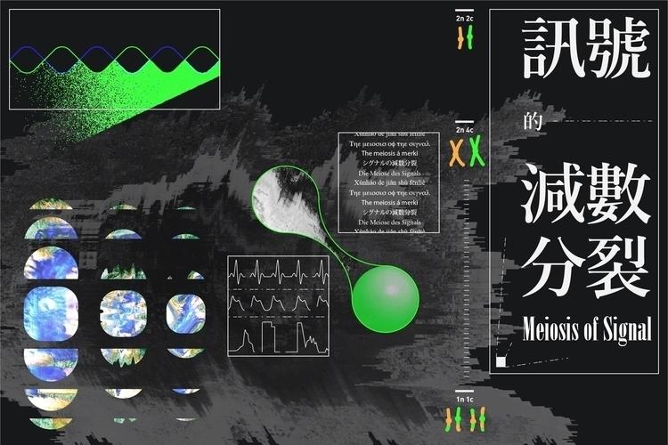 Meiosis Signal 訊號的減數分裂  - visualgraphc - sungdiyen | ello