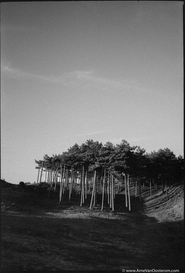 Film dead - LeicaM7, Leica, blackacnwhitephotography - arnevanoosterom | ello