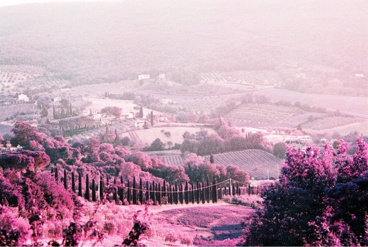 Lookin cute, Tuscany - shootfilm - brianne-siegel | ello