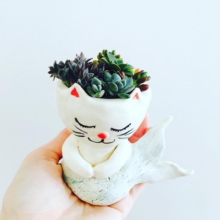 Purrmaid planter - purrmaid#ceramics#pottery#mermaid#succulants - livingdecortwins | ello