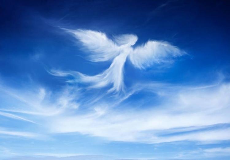 Soy tu Ángel ángel, aquel te vi - cochibispo | ello