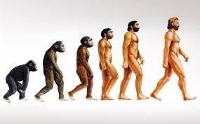 Έρχεται νέο είδος ανθρώπου; / s - iro81 | ello