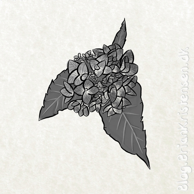 Drawing - flower, garden - art2u | ello