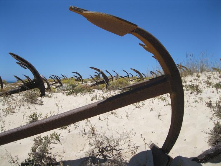 Anchors land, free mind sea - artespraticas | ello