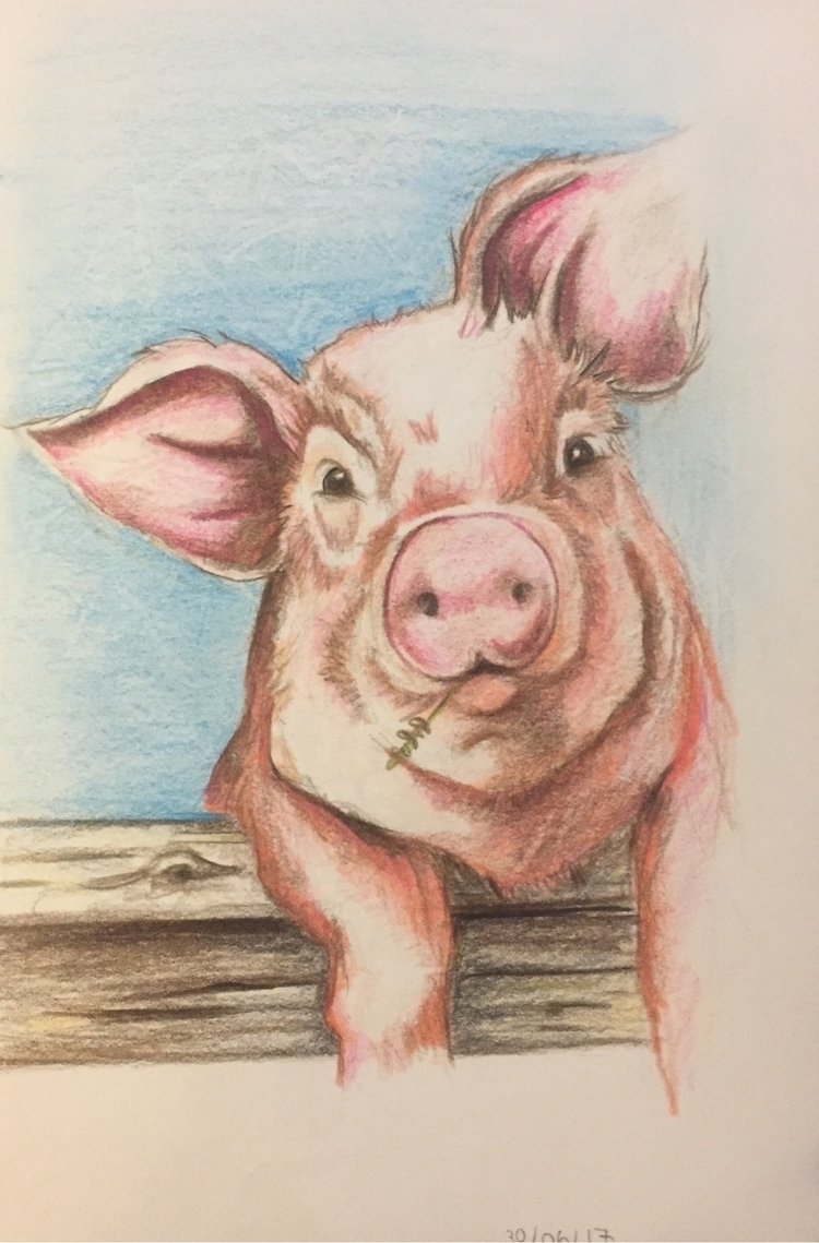 30/06/17 pencil - pig, animals, pink - nellie380 | ello