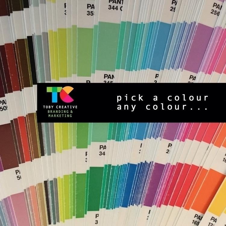 Pick colour, colour... Toby Cre - tobycreative | ello