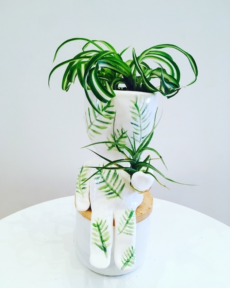 dude planter curly spider plant - livingdecortwins | ello