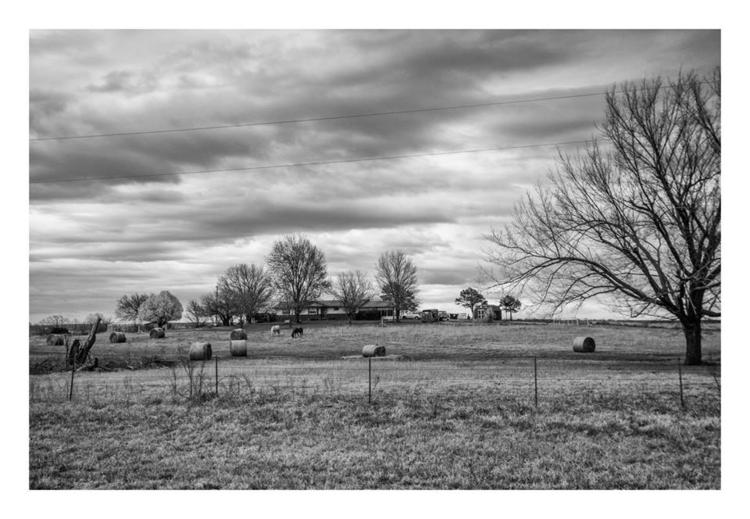 Ranch, Oklahoma - gardenlovepoet - guillermoalvarez | ello