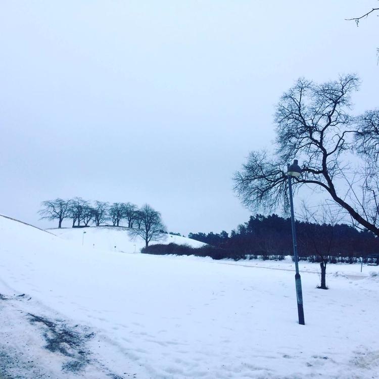 TBT vintras! Skogskyrkogården ä - skogskyrkogardar | ello