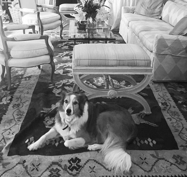 Ella photographed Nancy Baron,  - exinerartstudio | ello