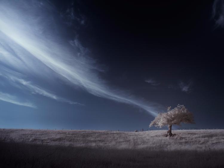 > ƒlow - photography, infrared - andyleeuk | ello